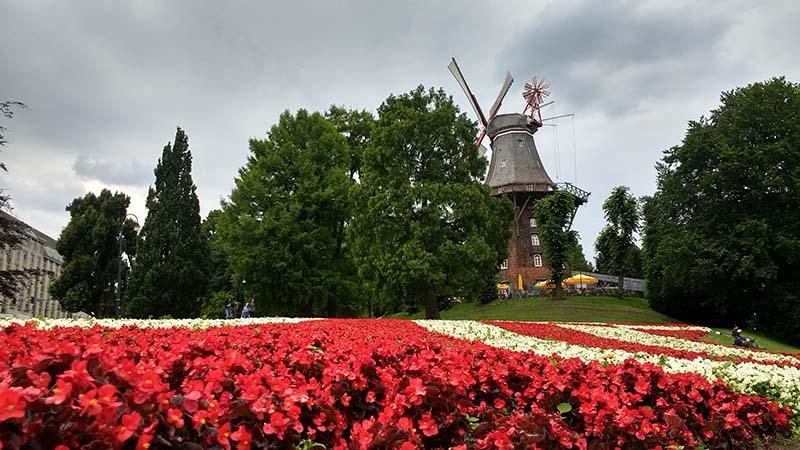 Campos de flores em Bremen na Alemanha