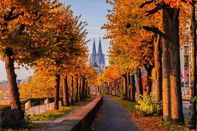 Outono em Colônia